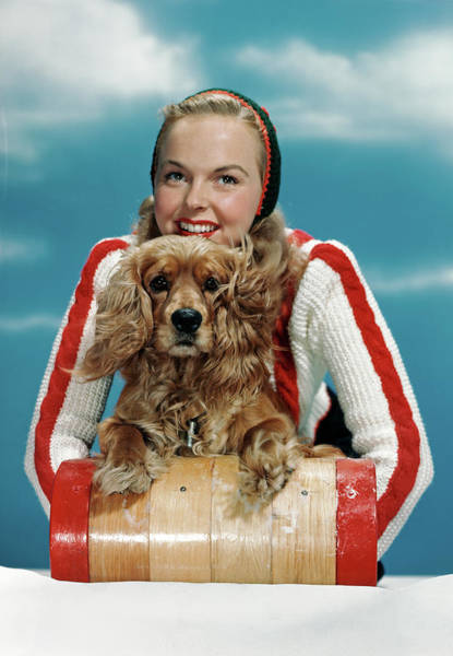 Cocker Spaniel Photograph - 1940s 1950s Smiling Woman On Wooden by Animal Images