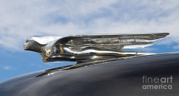 Photograph - 1942 Cadillac Hood Ornament by Kevin McCarthy