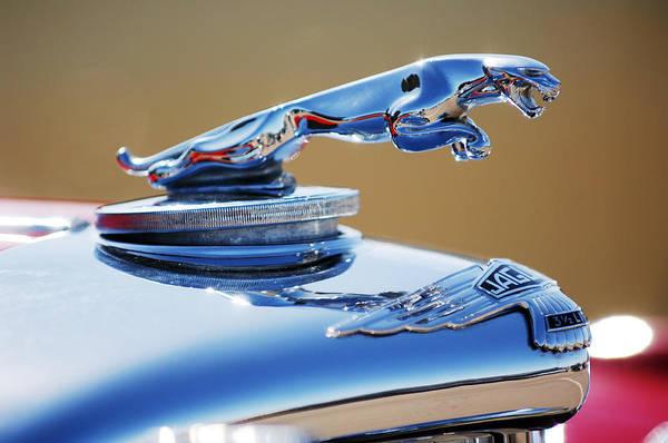 48 Wall Art - Photograph - 1948 Jaguar 2.5 Litre Drophead Coupe Hood Ornament by Jill Reger