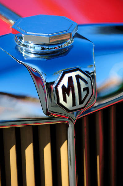 Tc Photograph - 1948 Mg Tc Hood Ornament -767c by Jill Reger