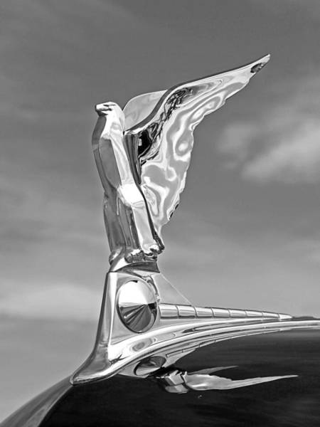 Photograph - 1950 Ford Hood Ornament In Black And White by Gill Billington