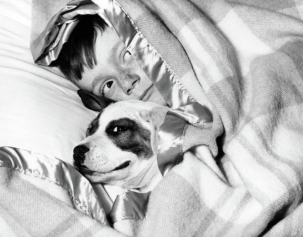 Naughty Dog Wall Art - Photograph - 1950s Boy Hiding Under Blanket In Bed by Vintage Images