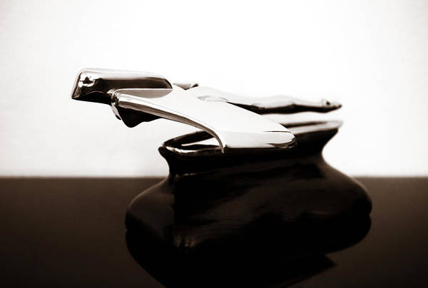 Photograph - 1950s Car Hood Ornament 3 by Marilyn Hunt