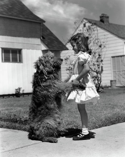 Pet Care Photograph - 1950s Girl On Suburban Sidewalk Holding by Vintage Images