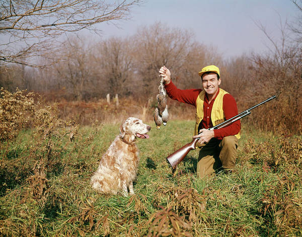 Setters Photograph - 1950s Man With Hunting Dog And Gun by Vintage Images
