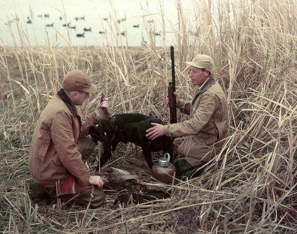 Wall Art - Photograph - 1950s Two Men Duck Hunters And Black by Animal Images