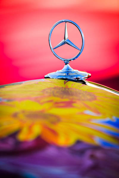 Photograph - 1952 Mercedes-benz 220 A Cabriolet Hood Ornament by Jill Reger