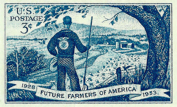 Stamp Collecting Photograph - 1953 Future Farmers Of America Postage Stamp by David Patterson