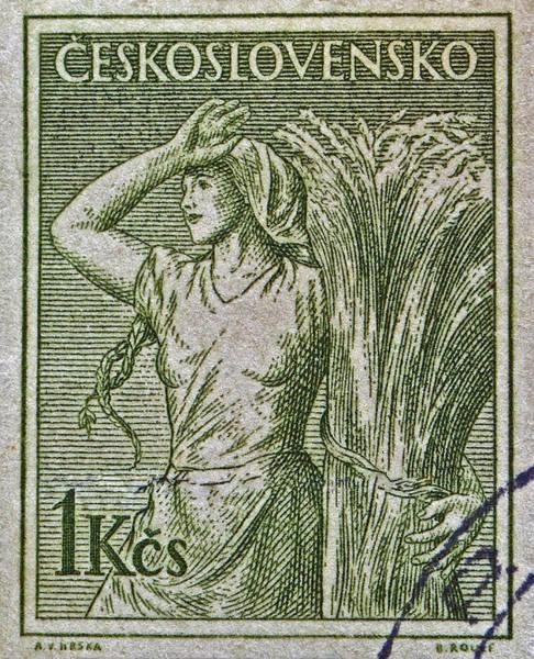 Czechoslovakian Photograph - 1954 Czechoslovakian Farm Woman Stamp by Bill Owen