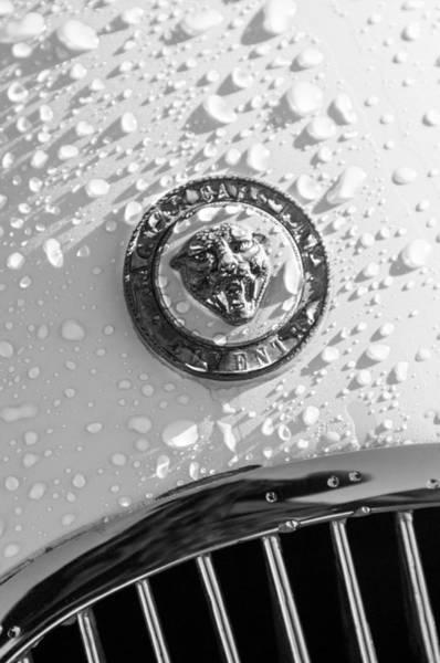 Photograph - 1954 Jaguar Xk120 Roadster Emblem by Jill Reger