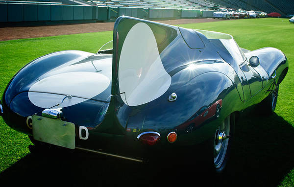 Photograph - 1956 Jaguar D-type by Jill Reger