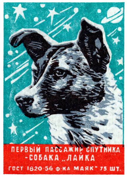 Communist Painting - 1957 Laika The Space Dog by Historic Image