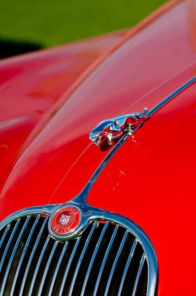 Photograph - 1959  Jaguar Xk150 Sots Hood Ornament - Grille by Jill Reger