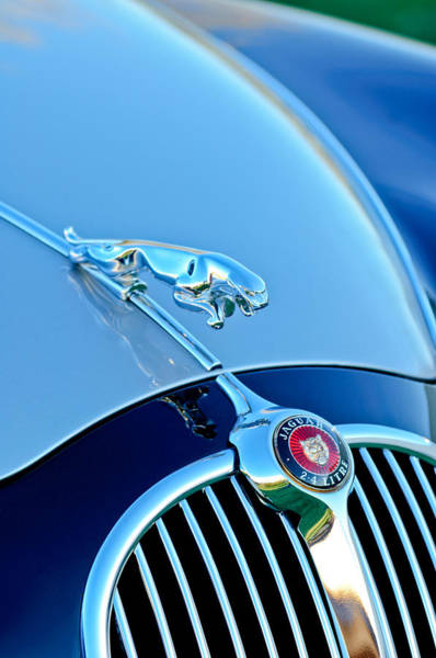 Photograph - 1960 Jaguar Mk II 2.4-liter Saloon Grille Emblem - Hood Ornament by Jill Reger