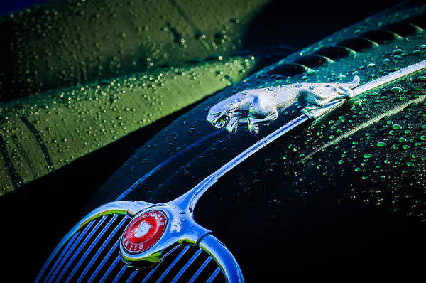 Wall Art - Photograph - 1960 Jaguar Xk 150s Fhc Hood Ornament -0441c by Jill Reger
