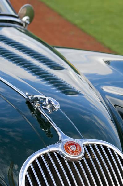 Photograph - 1960 Jaguar Xk 150s Fhc Hood Ornament 3 by Jill Reger