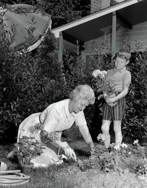 Parental Care Photograph - 1960s Boy Helping Grandmother Plant by Vintage Images