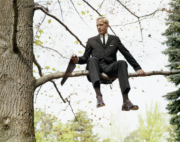 Wall Art - Photograph - 1960s Business Man In Tree Sawing by Vintage Images