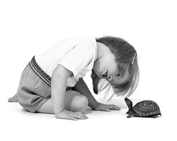 Box Turtle Photograph - 1960s Girl Looking At Box Turtle by Vintage Images