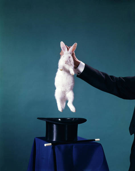 Wall Art - Photograph - 1960s Hand Of Magician Pulling White by Animal Images