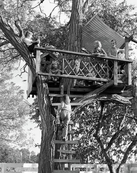 Playhouse Photograph - 1960s Kids Playing In Tree House by Vintage Images