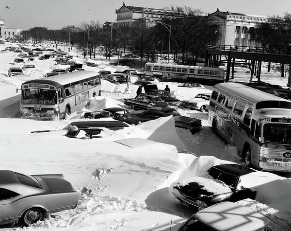 Humor In Art And Photograph - 1960s Overhead View Of Cars And Buses by Vintage Images