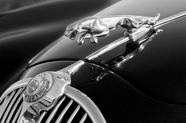 Photograph - 1964 Jaguar Mk2 Saloon Hood Ornament And Emblem by Jill Reger