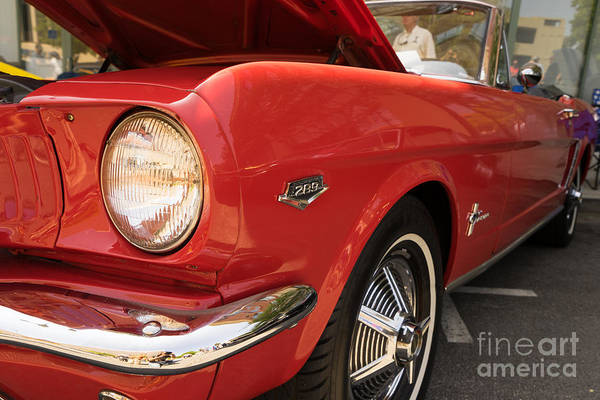 Photograph - 1965 Ford Mustang Dsc1387 by Wingsdomain Art and Photography