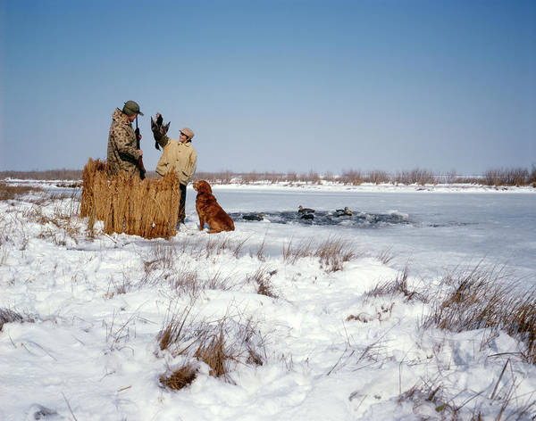 Duck Hunt Photograph - 1970s Father Son Hunting In Winter Snow by Animal Images
