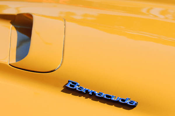 Photograph - 1971 Plymouth Barracuda Convertible Hood Emblem by Jill Reger