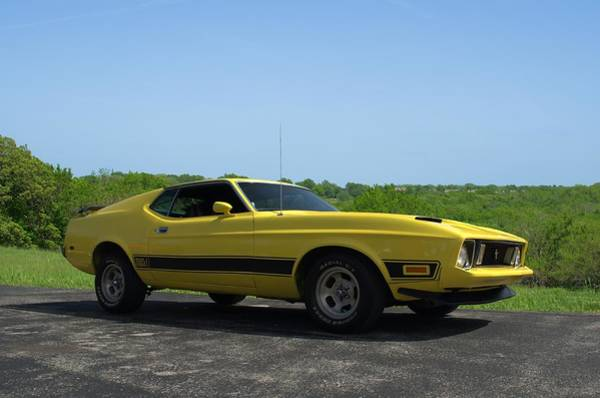Photograph - 1973 Ford Mustang Mach 1 by Tim McCullough