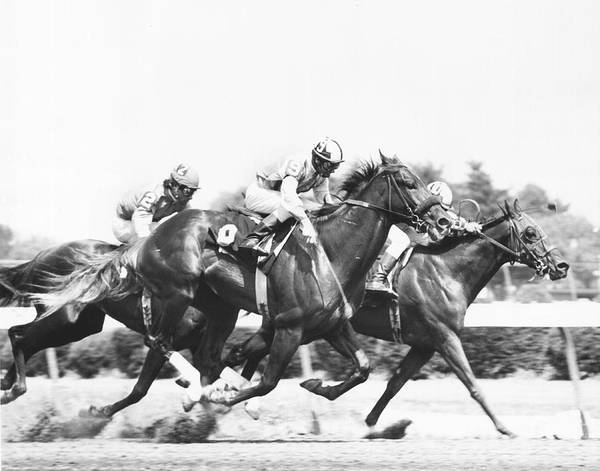 Trot Wall Art - Photograph - 1976 Rockingham Park Vintage Horse Racing by Retro Images Archive