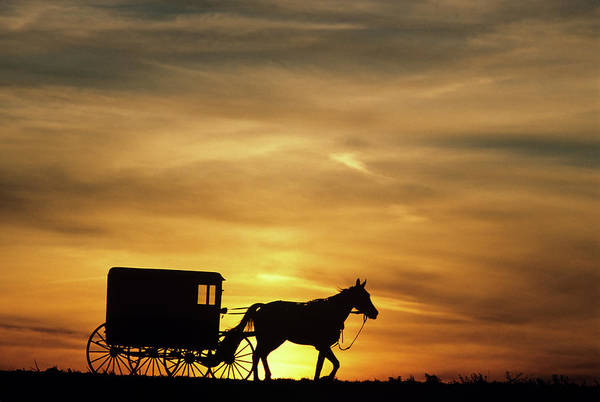 East County Photograph - 1980s Amish Horse And Buggy Silhouetted by Vintage Images