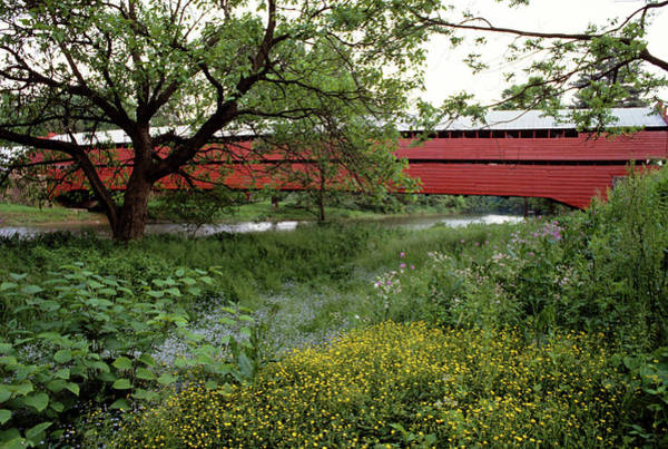 Wall Art - Photograph - 1990s Dreibelbis Station Covered Bridge by Vintage Images