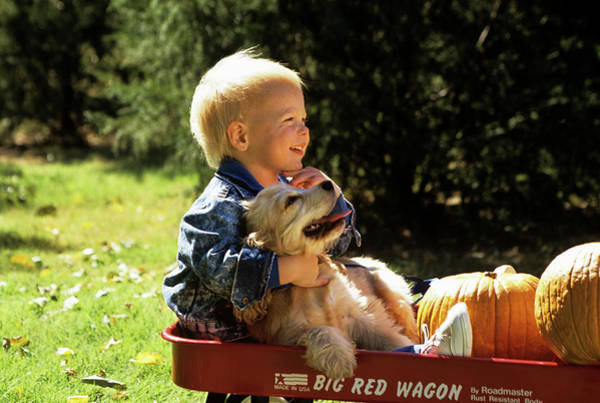 Wall Art - Photograph - 1990s Young Boy Hugging Dog In Wagon by Animal Images