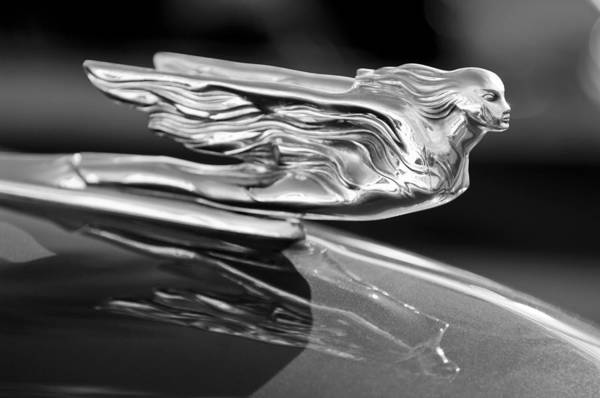 Vintage Hood Ornaments Photograph - 1941 Cadillac Hood Ornament by Jill Reger