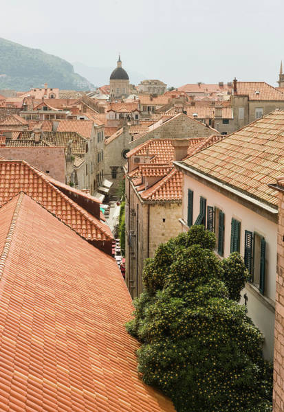 Vertical Perspective Photograph - A View Of Downtown Dubrovnik, Croatia by Lacey Ann Johnson