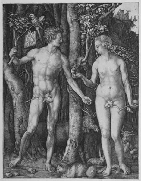 Digital Art - Adam And Eve by Albrecht Durer