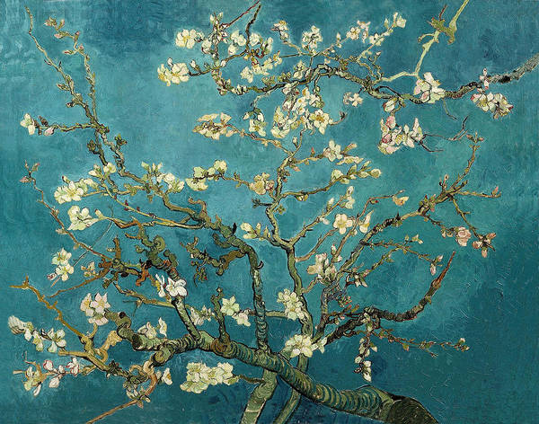 Almond Painting - Almond Branches In Bloom by Vincent van Gogh