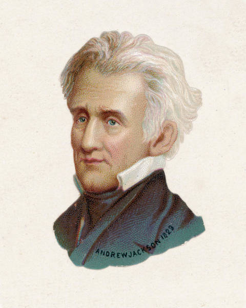 Wall Art - Drawing - Andrew Jackson  7th President by Mary Evans Picture Library