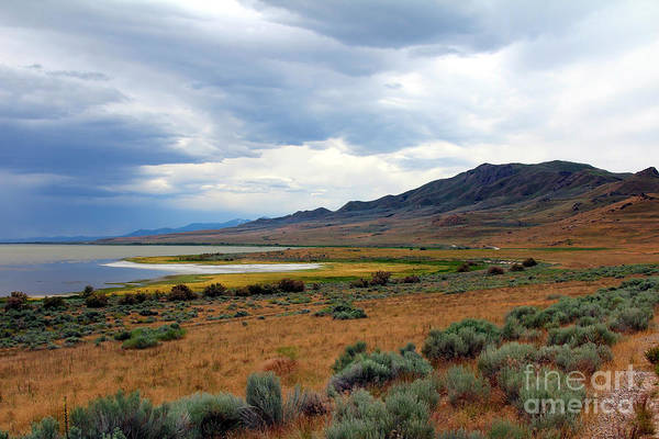 Art Print featuring the photograph Antelope Island by Jemmy Archer