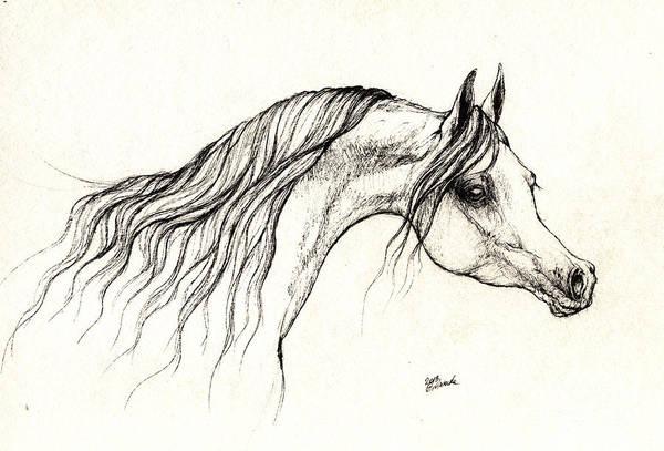 Arabian Horse Drawing A  13 08 2013 Art Print