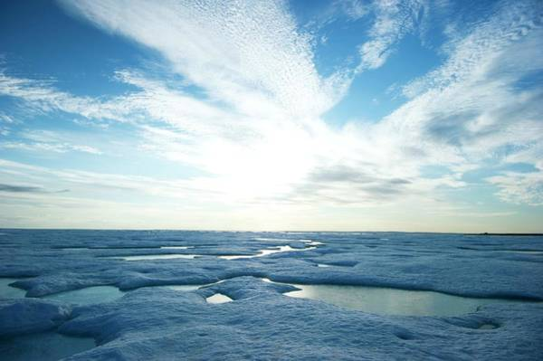 Wall Art - Photograph - Arctic Landscape At Midnight In Summer by Louise Murray/science Photo Library