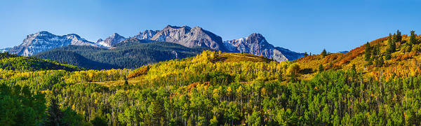 Bald Mountain Photograph - Aspen Trees With Mountains by Panoramic Images