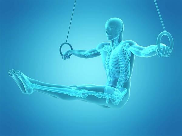 Wall Art - Photograph - Athlete Using Gymnastic Rings by Sebastian Kaulitzki/science Photo Library