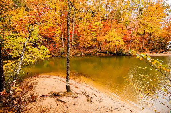 Photograph - Autumn Season At A Lake by Alex Grichenko