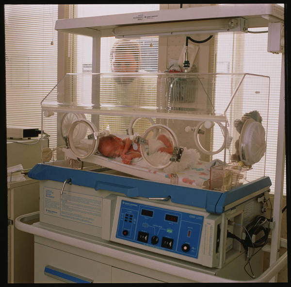 Concern Photograph - Baby In Incubator by Stevie Grand/science Photo Library
