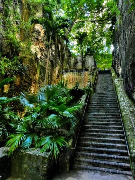 Photograph - Bahamas 008 by Lance Vaughn