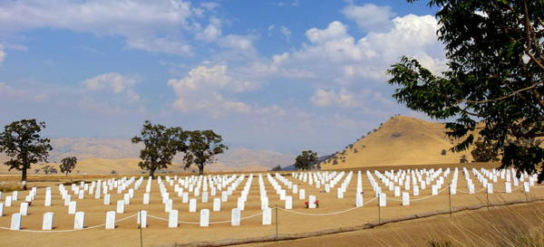 Photograph - Bakersfield National Veterans Cemetery  by Jeff Lowe