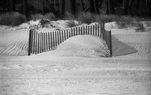 Photograph - Beach Sand Dunes by Frank Romeo